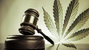 Gavel and Cannabis leaf